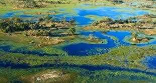 وقد يؤثر التكسير في منابع دلتا أوكافانغو تأثيراً سلبياً على نوعية المياه في هذه المنطقة من مصادر المياه. GettyImages
