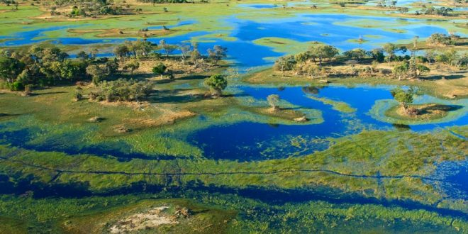 Fracking in the headwaters of the Okavango delta may negatively affect the water quality in this water source area. GettyImages